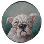 Bulldogge (VERKAUFT)