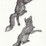 Wölfe, Tusche auf Papier