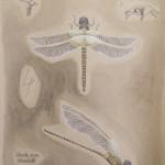 Odonata Acerae: Ahornlibelle, 50cm x 65cm, Mischtechnik auf Halbkarton