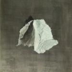 Papier 6, Acryl auf MdF, B40H50cm, September 2020
